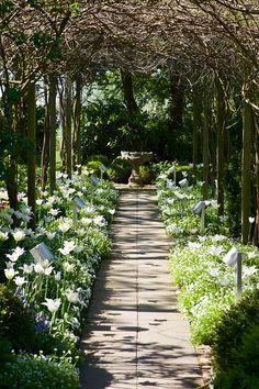 grafgarten, die grafgarten akademie bietet hobbygärtnern und, Design ideen