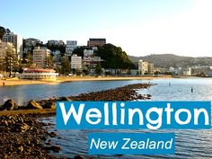 Travel Tips - What to Do in Wellington, New Zealand