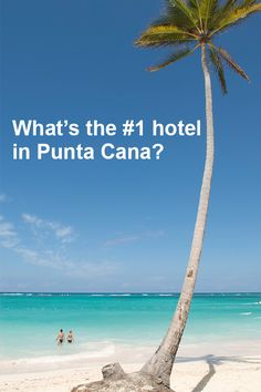 Don't just stay anywhere in Punta Cana. See what travelers say. TripAdvisor searches 200+ sites to find you the best hotel prices.