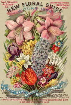 Vintage Flowers ~ Retrò Pop-art style | Tutt'Art@ | Pittura * Scultura * Poesia * Musica |