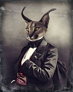 Cat Art Lynx Collage Anthropomorphic Victorian