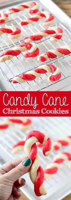 Old-fashioned peppermint Candy Cane Cookies. Candy Cane Cookies - Peppermint Candy Cane Christmas Cookies- delicious dessert recipe for kids! For more easy food recipes, creative craft ideas, easy home decor and DIY projects, check us out at # Köstliche Desserts, Holiday Desserts, Holiday Baking, Holiday Treats, Holiday Recipes, Christmas Recipes For Kids, Mexican Desserts, Christmas Dessert Recipes, Best Holiday Cookies