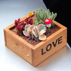 Model Number: wooden flower potMaterial: WoodWood Type: PineUsage Condition: DesktopUsed With: Flower/Green PlantType: Nursery PotsStyle: ClassicFinishing: Not Coated Wood Planter Box, Wooden Planters, Wooden Flower Boxes, Weekend Crafts, Backyard Plants, House Plants Decor, Cactus Y Suculentas, Rustic Gardens, Plant Shelves
