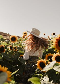 Photoshoot in the Sunflower Fields with Danielle Perry shot by Arielle Levy in San Diego