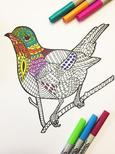 Alert Robin Bird  PDF Zentangle Coloring Page by DJPenscript on Etsy