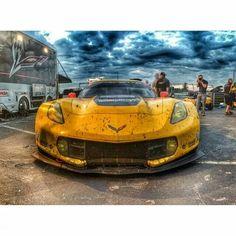 Milner Corvette Racing