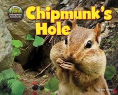 Chipmunk's Hole