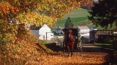 amish country - Fall Leaf Tours In The American Countryside - A Relaxing Weekend Getaway