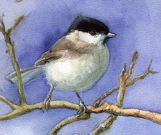 Chickadee painting watercolor bird original by VerbruggeWatercolor
