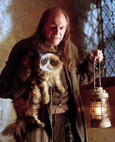 Harry Potter + Grumpy Cat... Wow, why am I just making this connection now!?