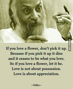 My favorite quote on love