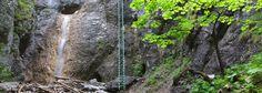 Národný park Slovenský raj Arch, Outdoor Structures, Garden, Plants, Longbow, Garten, Lawn And Garden, Gardens, Plant
