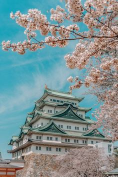 16 Very Best Things To Do In Japan
