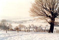 Snowy landscape (Zuid-Limburg, Holland)