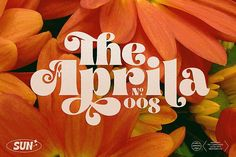 Aprila Font Family by Studio Sun on Creative Market Source by yayandcc Look t-shirt Typography Letters, Typography Design, Branding Design, Logo Design, Graphic Design, Design Retro, Web Design, Design Art, Hippie Font