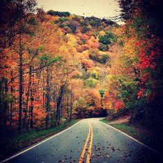 Fall time in Appalachia...