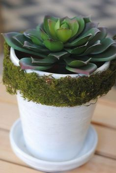 Hometalk :: Ready for Spring? Here's 3 EASY Ways to Decorate Flower Pots!