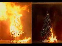 Christmas Tree Fire - see how flammable a dry Christmas tree can be as opposed to a well-watered one!