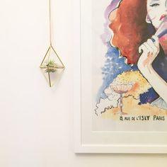 Doble diamante Himmeli Jardinera interior por SproutFriends