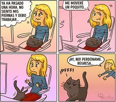Cómic gato en casa nunca se enoja