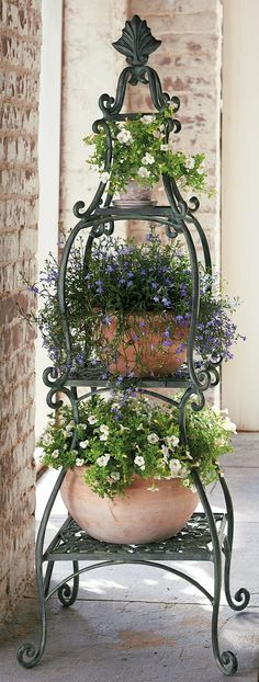DIY Outdoor: Making Porch Plants For Summer Each piece of this Florentine Plant Etagere handsomely showcases your favorite plants. The post DIY Outdoor: Making Porch Plants For Summer appeared first on Garden Ideas. Container Plants, Container Gardening, Beautiful Gardens, Beautiful Flowers, Florentine Gardens, Pot Jardin, Deco Nature, Pot Plante, Garden Projects