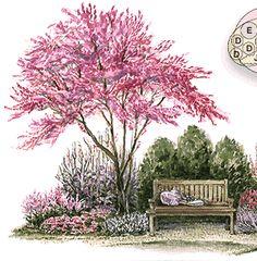 A NOOK GARDEN;  Plans designed and layout with identification Garden Nook, Garden Cottage, Corner Garden, Garden Beds, Landscape Plans, Landscape Design, Flower Landscape, Abstract Landscape, Back Gardens