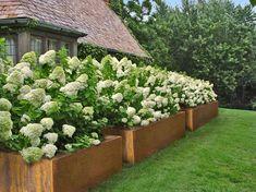 Corten Steel Planters, Japanese Interior, Outdoor Planters, Container Plants, Planter Boxes, Exterior Design, Garden Design, Minimalism, Pergola