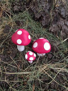 Fairy Garden Colored Toadstools Mushrooms Miniature Accessories Each Order Includes 5