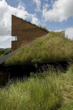 toiture végétalisée, bâtiment moderne et architecture verte