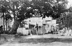 Dominion Photo Co. photo, Vancouver Public Library VPL 1870 Gastown In the year this photograph of Water Street was taken, the informal little hamlet of Gastown was surveyed and officially anointed the Township of Granville. Vancouver Photos, Vancouver City, Vancouver Island, Vancouver Gastown, Vintage Pictures, Old Pictures, Old Photos, Local History, History Facts
