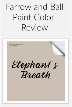 Farrow and Ball elephant's breath paint sample to pin Neutral Wall Paint, Warm Gray Paint, Greige Paint Colors, Neutral Walls, Wall Paint Colors, Best Interior Paint, Interior Paint Colors, Farrow And Ball Paint, Farrow Ball