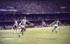 Paulistão de 1993 #Evair #Palmeiras (Foto: Djalma Vassao / Agência Estado)