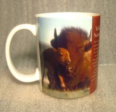 2a4f3d07168 Yellowstone National Park Bison Mother and Child Coffee Cup Mug Ceramic mug  with crisp clear images