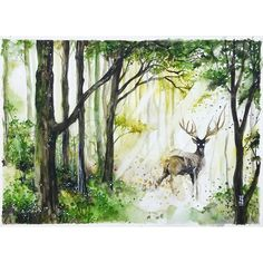 "when I tried to be 'normal' . ""FOREST""  Watercolour on Canson Montval watercolor paper size 350x275 cm 300gsm.  #watercolor #watercolour #stag #deer #art #artwork by #jongkie #green by jongkie"