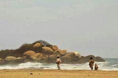 Parque Tayrona. Tayrona National Park, Great Places, Camel, National Parks, Animals, Parks, Animales, Animaux, Camels