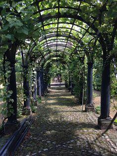 Rubenshuis de tuin