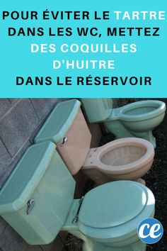 détartrer les toilettes avec des coquilles d'huitres Tips & Tricks, Diy Cleaning Products, Good To Know, Home, Meli Melo, Ideas, Clean Toilets, Cleanser, Surfing