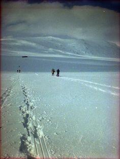 Reinheimen, Noorwegen. Diana Mini met Lomography CN 800 film.