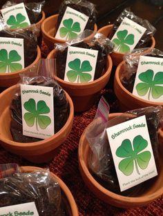 Shamrock Seeds #spring #gifts #StPatricksDay