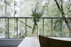 Minimal Vase on a table :: Flower Wallpapers Casa Clean, Jolie Photo, Spring Cleaning, Green Cleaning, Fall Crafts, Diy Crafts, How To Plan, How To Make, A Table