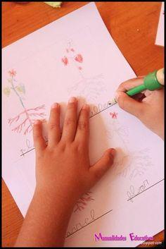 Botánica Montessori - Mini libro Nomenclatura de las partes de la planta - Imprimible Gratis   Creciendo con Montessori