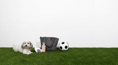 Magnet Medium Metro Tote propped out with a BKR bottle and soccer ball on our most recent MZW Fitness shoot