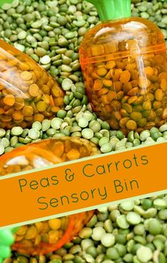 Peas and Carrots Sensory Bin...fun play activity for toddlers