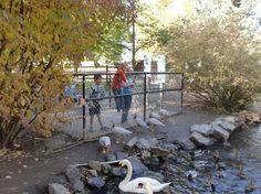 Willow Park Zoo   Logan, Utah