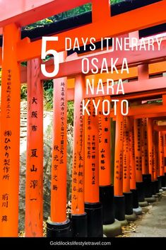Hotel Bee - Travel tips and Travel Guides Japan Travel Guide, Asia Travel, Travel Guides, Overseas Travel, Tokyo Travel, Travel Hacks, Osaka Winter, Osaka Itinerary, Las Vegas