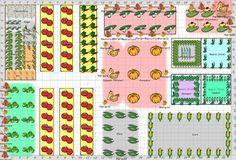 Vegetable Garden Layout | Garden Plans  2013: Vegetable Garden