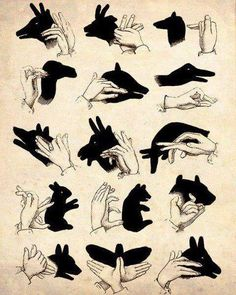 Shadow puppets how-to