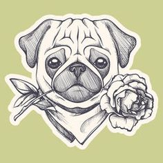 Find Cute Pug Portrait Dog Sketch Style stock images in HD and millions of other royalty-free stock photos, illustrations and vectors in the Shutterstock collection. Freundin Tattoos, Carlin, Pug Art, Drawing Hands, Dog Illustration, Pug Love, Dog Tattoos, Animal Drawings, Drawing Sketches