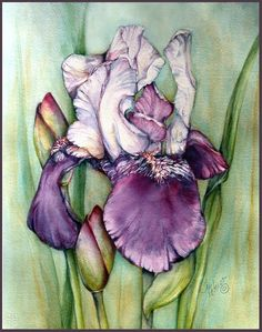 Teri Peterson watercolor inkjet printed on watercolor paper