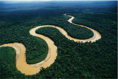 El Río Amazonas/Bosque Tropical fue incluido en la lista de las siete maravillas naturales del mundo